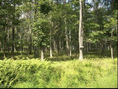 Lords Valley PA Residential Lots & Land For Sale: $5,000