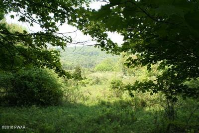 Honesdale PA Residential Lots & Land For Sale: $55,000