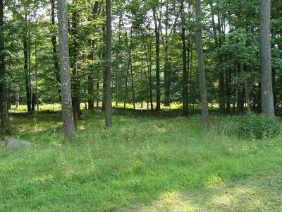 Tanglwood Lakes Residential Lots & Land For Sale: Lot 450 Shady Glen Dr
