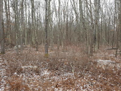Hidden Lake Estates Residential Lots & Land For Sale: 1021 Wintergreen Ct