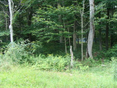 Gouldsboro PA Residential Lots & Land For Sale: $15,000