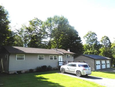 Equinunk Single Family Home For Sale: 109 Lester Rd