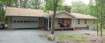 Hemlock Farms Single Family Home For Sale: 803 Burning Tree Ct
