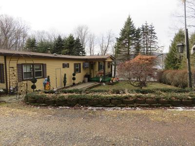 Lake Ariel Single Family Home For Sale: 125 Rosebank Rd