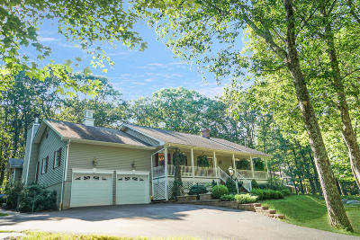 Milford Single Family Home For Sale: 179 Philwood Ln
