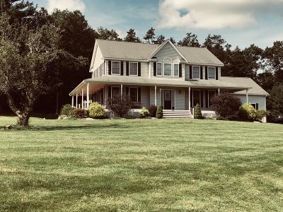 Dingmans Ferry Single Family Home For Sale: 100 Stone Ridge Rd