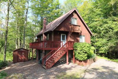 Lake Ariel Single Family Home For Sale: 218 Ridgewood Cir