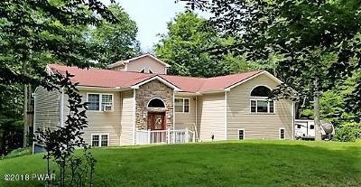 Newfoundland Single Family Home For Sale: 1016 Overlook Trl