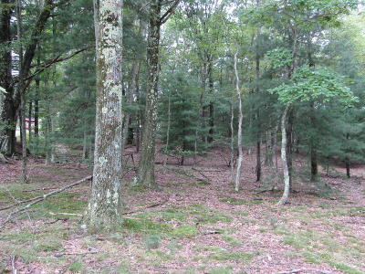 Greentown Residential Lots & Land For Sale: 1 St. Andrews Dr