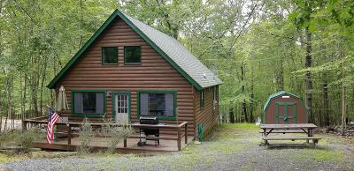 Lackawaxen Single Family Home For Sale: 129 Pebble Rock Rd