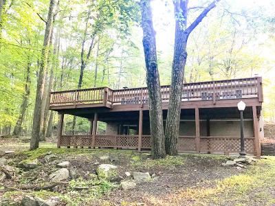 Hawley Single Family Home For Sale: 30 E Shore Dr
