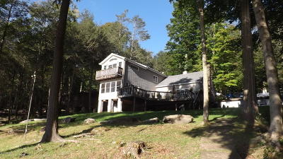 Pike County Single Family Home For Sale: 111 Bent Rd