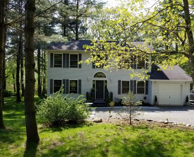 Milford Single Family Home For Sale: 141 Husson Rd