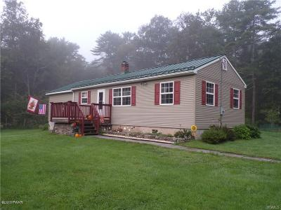 Eldred Single Family Home For Sale: 793 State Rte 55