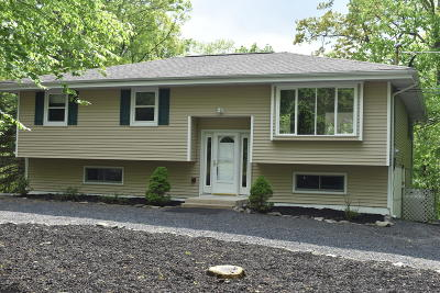 Lords Valley PA Single Family Home For Sale: $215,000