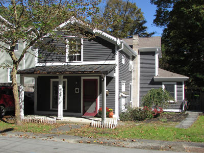 Milford Single Family Home For Sale: 111 Sawkill Ave