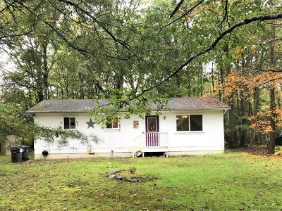 Dingmans Ferry Single Family Home For Sale: 151 Raccoon Rd