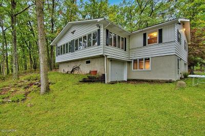 Hawley Single Family Home For Sale: 25 Lakefront Dr