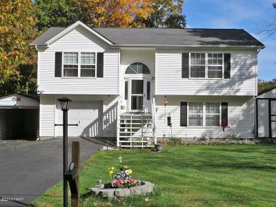 Milford PA Single Family Home For Sale: $165,000