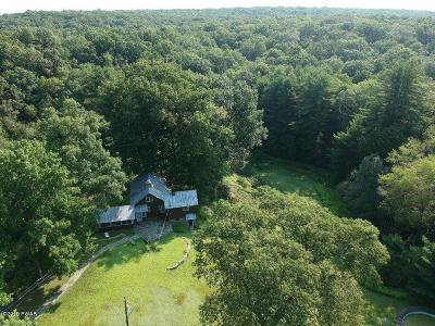 Pike County Single Family Home For Sale: 250 Shiny Mountain Rd