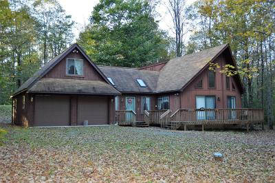 Single Family Home For Sale: 117 Panther Hill Dr