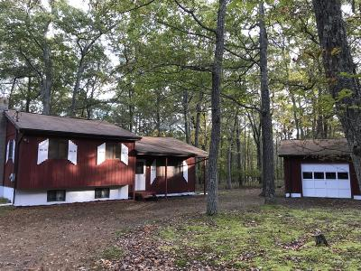 Dingmans Ferry Single Family Home For Sale: 168 Lake Forest Dr