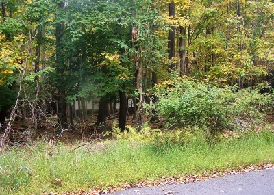 Lake Ariel Residential Lots & Land For Sale: 230 Ridgewood Cir