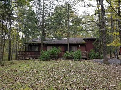 Pike County Single Family Home For Sale: 123 Boulder Drive