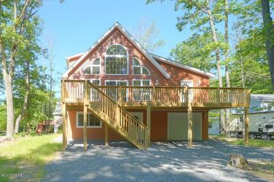Wallenpaupack Lake Estates Single Family Home For Sale: 1015 Cheroquee Ter