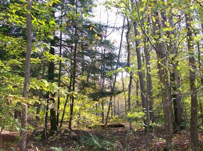 Honesdale Residential Lots & Land For Sale: Lot #6 Bunting Rd