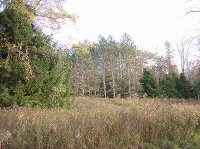 Honesdale Residential Lots & Land For Sale: Lot #9 Bunting Rd
