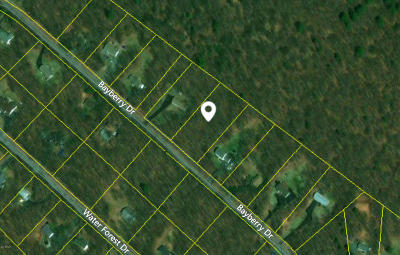 Dingmans Ferry Residential Lots & Land For Sale: 118 Bayberry Dr