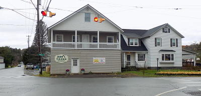 Newfoundland Commercial For Sale: 971 Main St