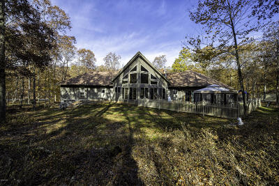 Pike County Single Family Home For Sale: 272 Falling Waters Blvd