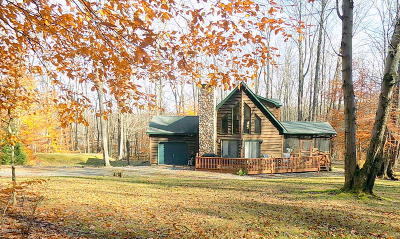 Pike County Single Family Home For Sale: 335 Lake Russell Rd