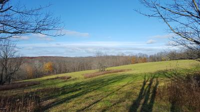 Honesdale Residential Lots & Land For Sale: Rt 191 And Wanoka Road
