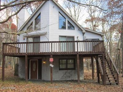 Lackawaxen Single Family Home For Sale: 169 Karl Hope Blvd