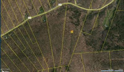 Wayne County Residential Lots & Land For Sale: 392 White Rock Dr