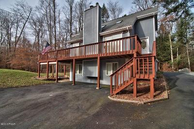 Pike County Single Family Home For Sale: 108 Sunfish Ln