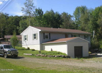 Pike County Single Family Home For Sale: 1175 Rt 507