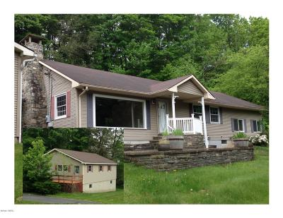 Wayne County Single Family Home For Sale: 771 Carlton Rd