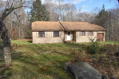 Pike County Single Family Home For Sale: 130 Beech Tree Ln