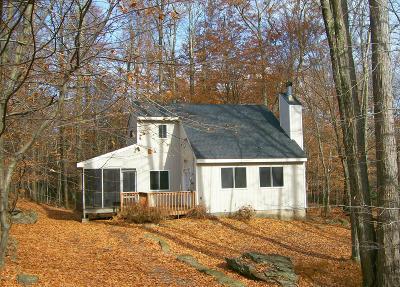 Wallenpaupack Lake Estates Single Family Home For Sale: 1096 Wallenpaupack Dr