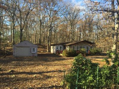 Pike County Single Family Home For Sale: 175 Lakewood Dr