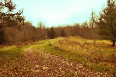 Honesdale PA Residential Lots & Land For Sale: $65,000