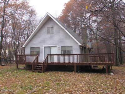 Pike County Single Family Home For Sale: 167 Roundhill Rd