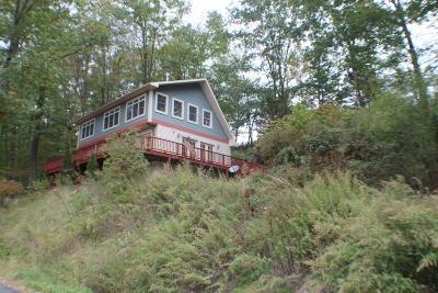 Single Family Home For Sale: 4948 Peas Eddy Rd