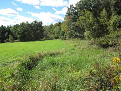 Honesdale Residential Lots & Land For Sale: Bristol Dr