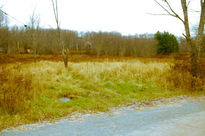 Honesdale PA Residential Lots & Land For Sale: $26,000