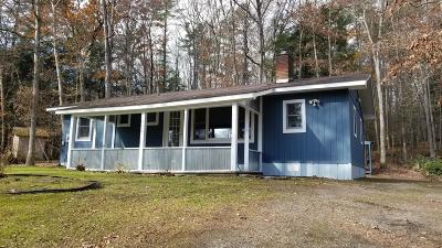 Narrowsburg NY Single Family Home For Sale: $129,000
